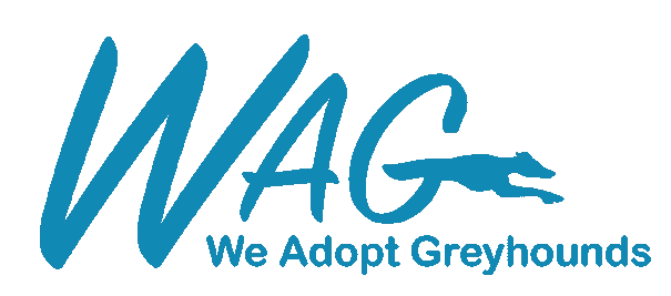 We Adopt Greyhounds Inc.